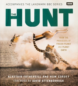BBC The Hunt